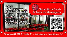 Floricultura Sarah e Amor de Mensagens – EMPRESA – PLANALTINA – GO – BR