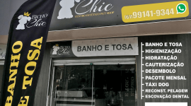 Bicho Chic – Pet Shop – EMPRESA – PLANALTINA – GO – BR